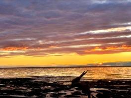Chalet-des-tournesols-coucher-de-soleil_002